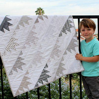 Delectable Mountains Baby Quilt